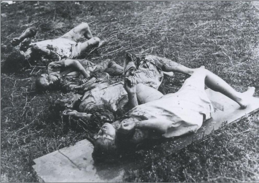 Воевала ли упа с немцами